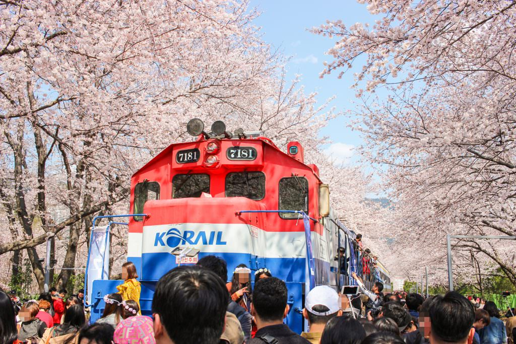 Famous gyeonghwa station train in Jinhae